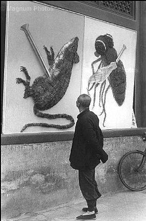 北京,除四害宣传画 1958