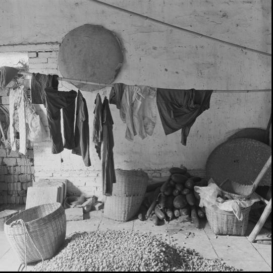 1979年,广州白云山下的农家