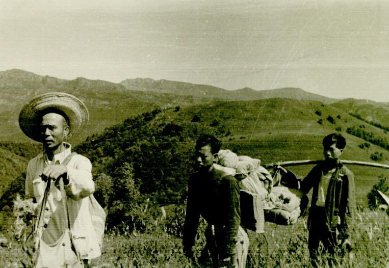 1.3 中草药普查队的一支小分队背上行李、用具、粮食,在老药农带领下,进山采药